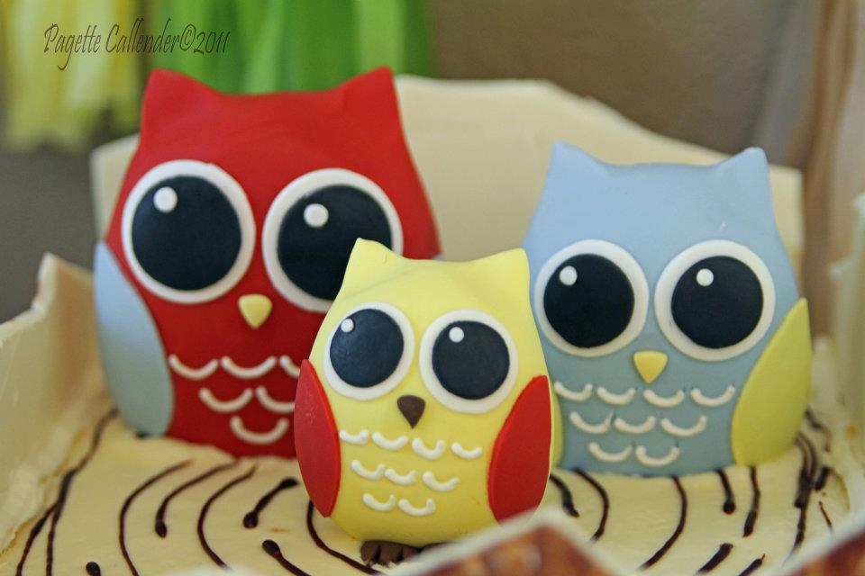 owl party cake topper