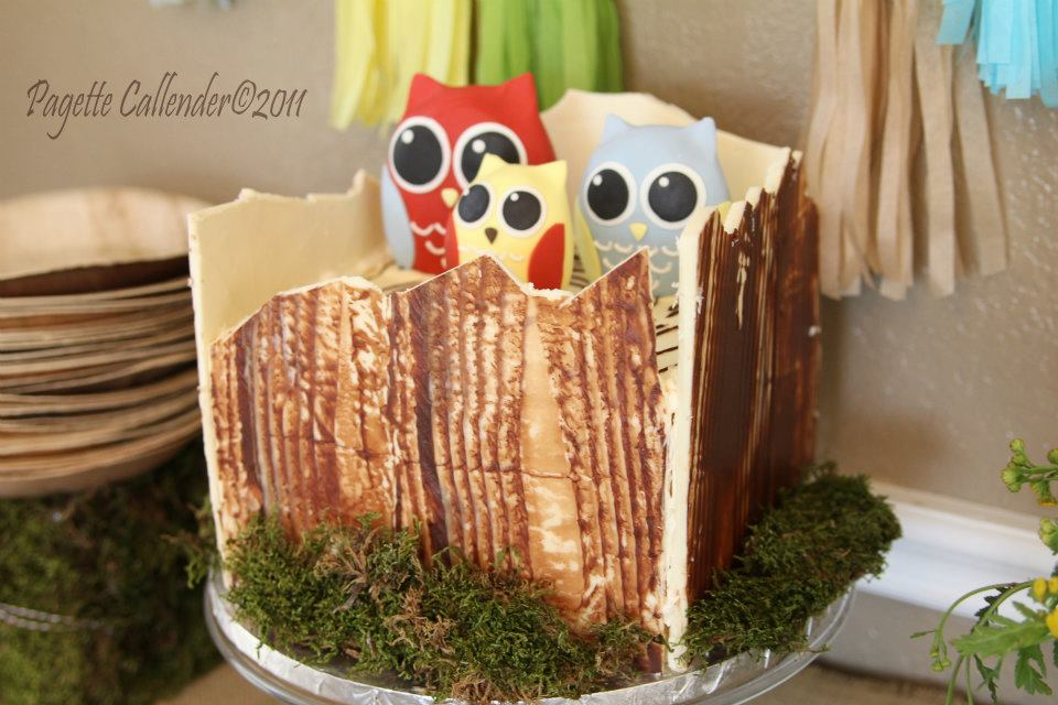 owl party cake