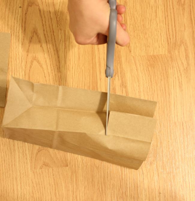 popcornbag4