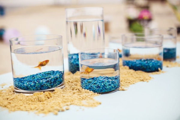 fish-vases