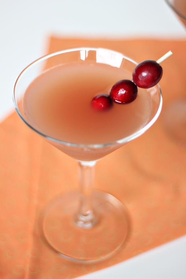 Cranberry Orange Martini Recipe