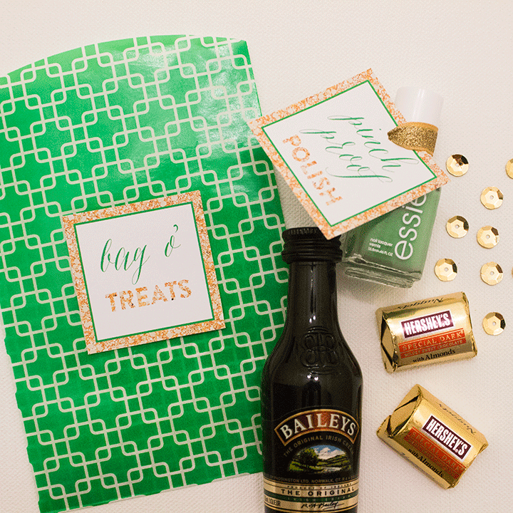 St. Patrick's Day Bag O' Treats DIY | The Flair Exchange