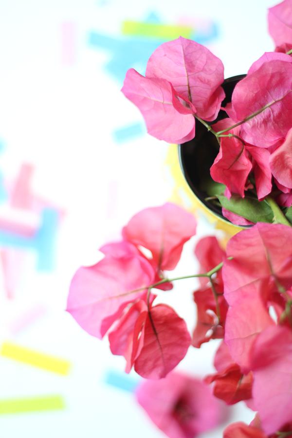 FlowersInFringeVase