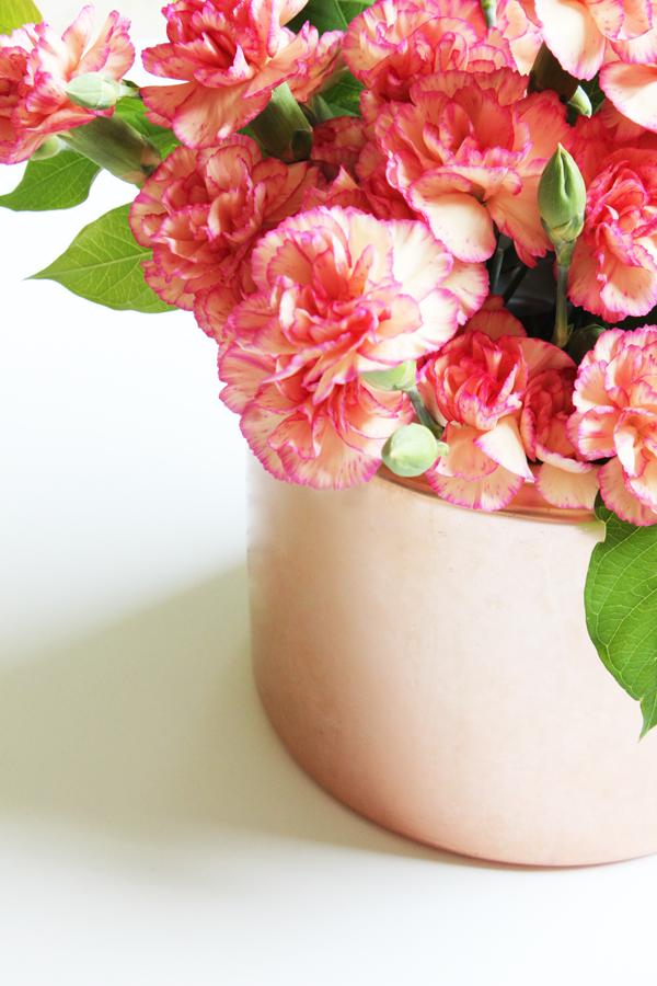 rosegoldcarnations