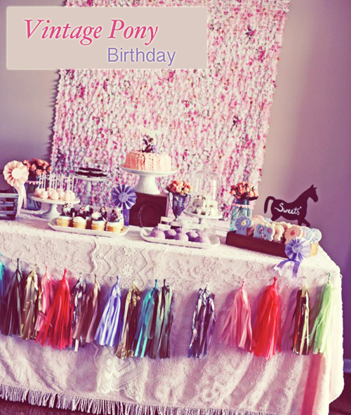Customer Party Vintage Pony Birthday Party Handmade